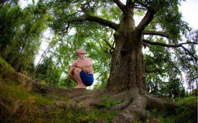 Shine! Yoga stellt vor: Ashtanga Yoga Innovation
